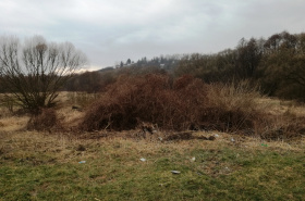 Land for sale, Svinica